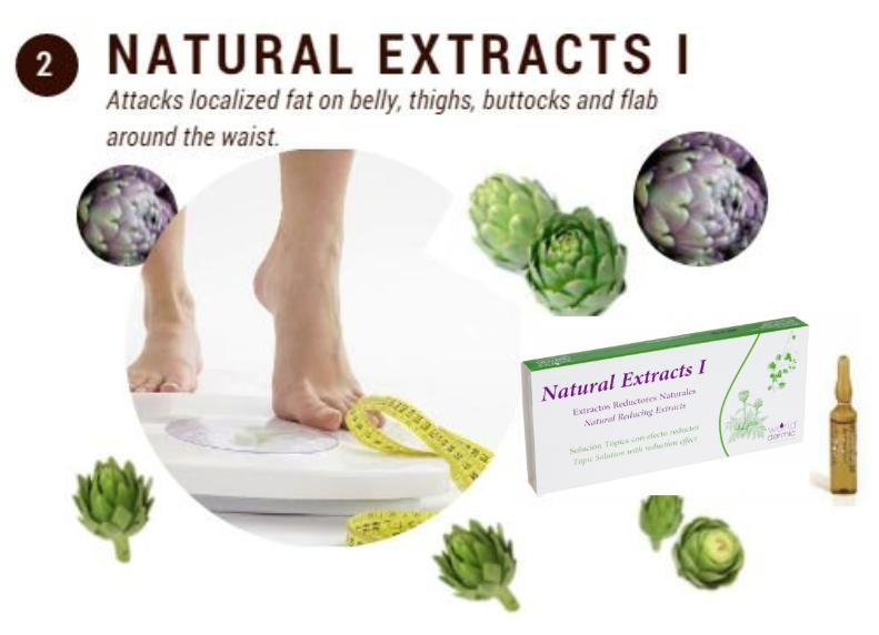 fat burner artichoke natural extracts world dermic